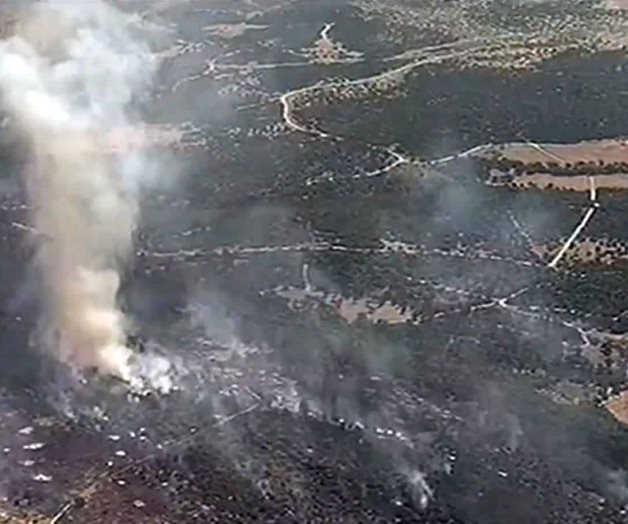 Incendio arrasa con cientos de acres en Palo Pinto, Texas