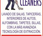 (LOGO) MASTER CLEANERS.